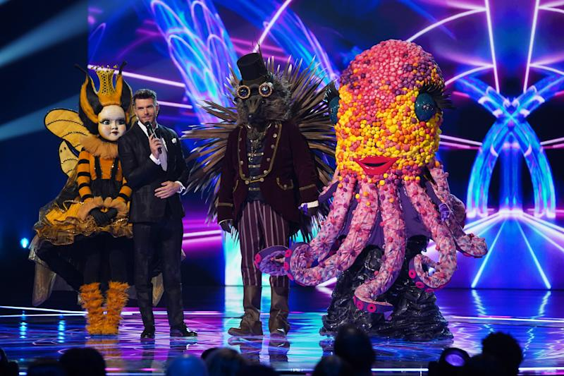 Hedgehog made it to the final with Queen Bee and Octopus (Bandicoot TV/ITV)