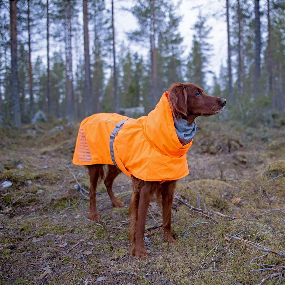 Hurtta Extreme Warmer Dog Winter Jacket.
