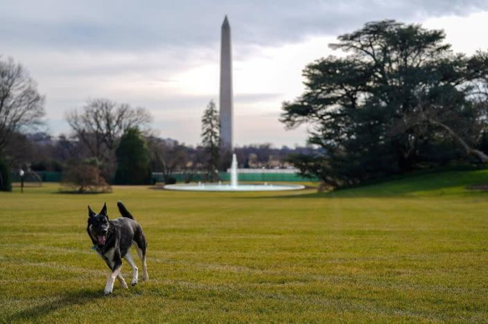 FILE PHOTO: Major explores the South Lawn after on his arrival from Delaware at the White House