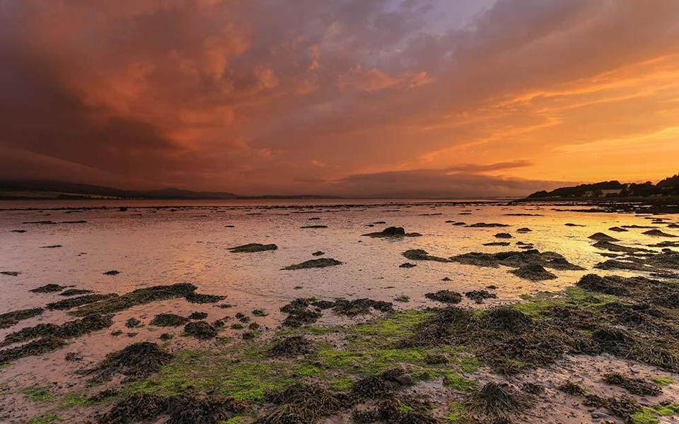 Beauly Firth, the passage into the dolphin-dotted Moray Firth - GORDIE BROON