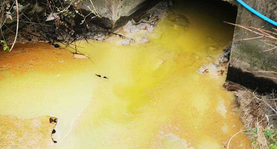 Drain spilling out neon yellow water.