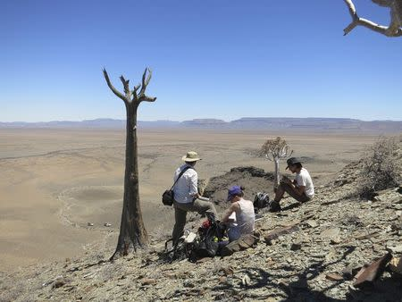Researchers carry out field work in southern Namibia, in this undated handout photoobtained by Reuters on June 26, 2014. REUTERS/Rachel Wood/Handout via Reuters