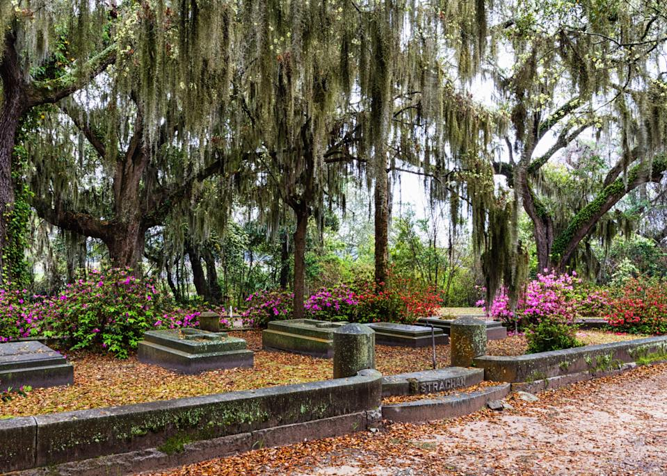 """<p><strong>What's the big picture here?</strong> History in Headstones is a one-man operation and the passion project of Don, the guide, who embraces a conversational style rather than lectures. Book early—this is one of Savannah's top-rated tours, so you can expect it to be crowded.</p> <p><strong>Tell us about your fellow tourees.</strong> The group skewed older, and was filled with people who really love history. Over two and a half hours we walked around a mile and a half, but it's easy terrain and there are plenty of rest stops, so it's fine for that older crowd.</p> <p><strong>How are the guides?</strong> As vice chairman of the Bonaventure Historical Society, Don has a rare level of expertise, but it's his charismatic and engaging delivery that makes the tour. There's a vague script in there somewhere, but his conversational style makes the experience feel like he's showing old friends around his favorite spots.</p> <p><strong>Anything you'll be remembering weeks or months or years from now?</strong> Fans of <em>Midnight In The Garden of Good and Evil</em> will love just being in <a href=""""https://www.cntraveler.com/activities/thunderbolt/bonaventure-cemetery?mbid=synd_yahoo_rss"""" rel=""""nofollow noopener"""" target=""""_blank"""" data-ylk=""""slk:this cemetery"""" class=""""link rapid-noclick-resp"""">this cemetery</a>, which features heavily in the novel (and movie). Don's expertise is also memorable; he brings to life the city's history through the graves of its most famous residents, from Savannah's founding through the Civil War and beyond.</p> <p><strong>So: Who will enjoy History in Headstones most?</strong> This tour will appeal to history buffs craving a deeper, more personal exploration of Savannah's past. It's thoroughly entertaining to listen to a man who so obviously loves giving the tours—that passion runs through to the """"pay what you feel it's worth"""" philosophy.</p>"""