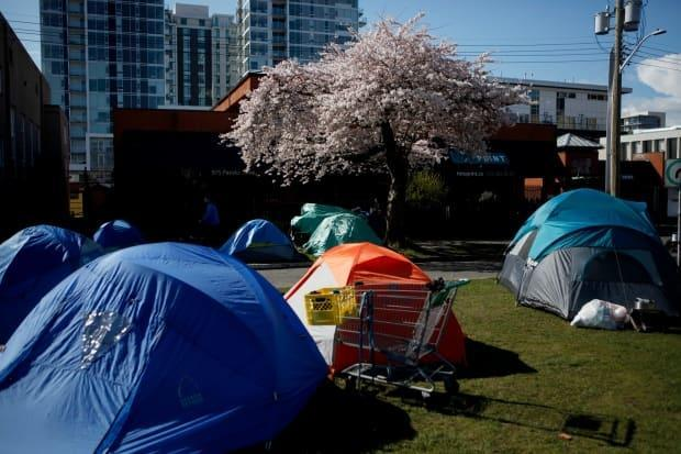 A homeless encampment is shown on Pandora Avenue in Victoria, B.C., on March 25, 2020.  (Chad Hipolito/Canadian Press - image credit)