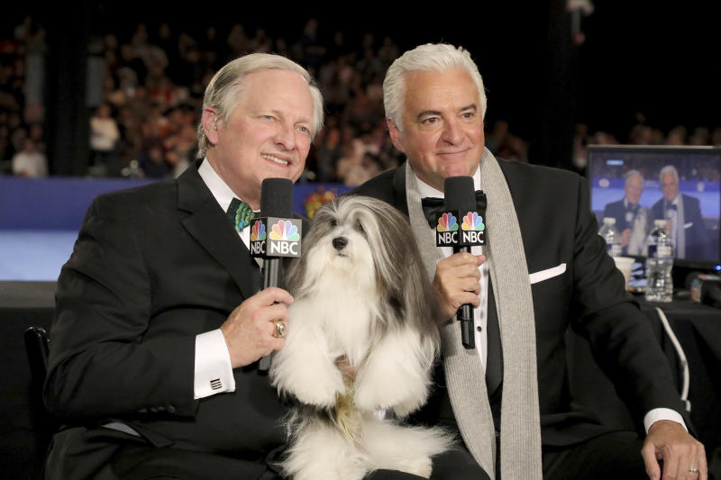 TV-National Dog Show