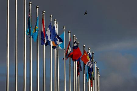 FILE PHOTO: A bird flies around the flagpoles of the national flags inside the Diplomatic Quarter, where Taiwan ally embassies located, in Taipei