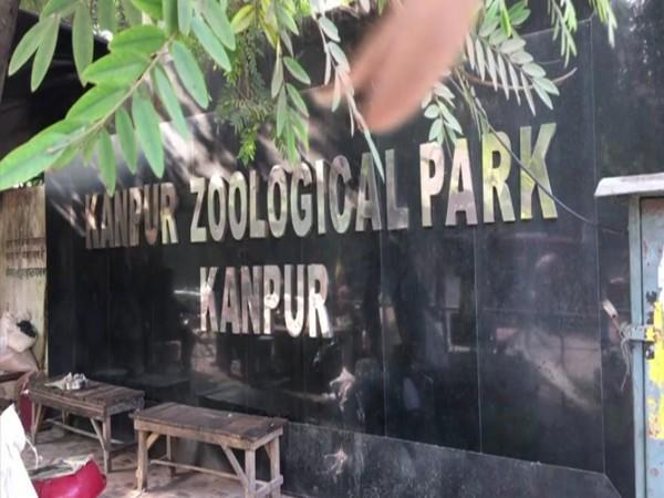 Visual from Kanpur zoo