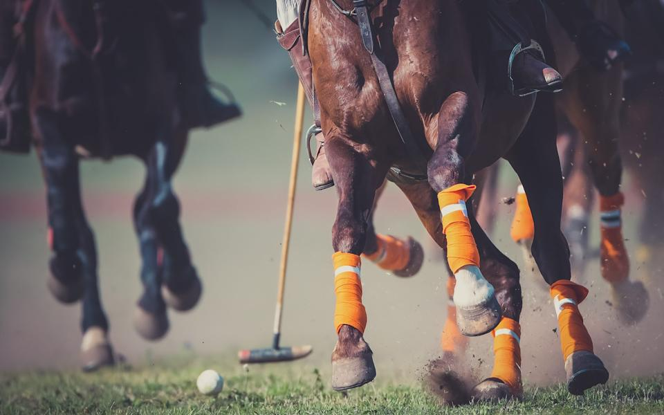 Polo is a quintessential Argentine pastime - Getty
