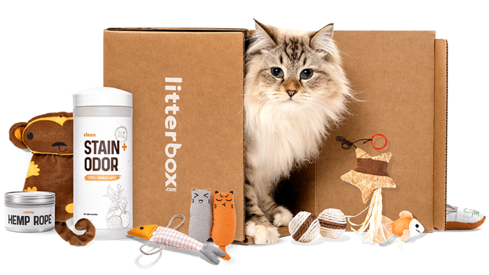 Best subscription gifts: Litterbox