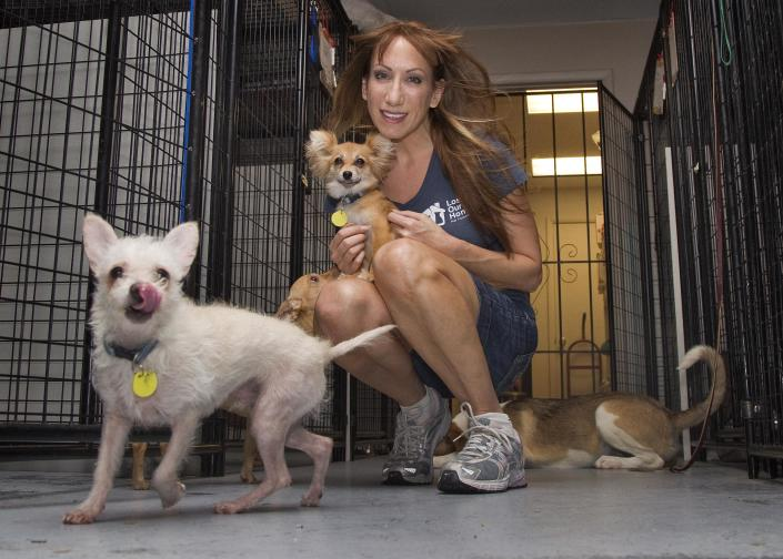 In this photo taken on Thursday, July 12, 2012, Jodi Polanski, founder and executive director of Lost Our Home Pet Foundation, poses with pets in Phoenix. Lost Our Home helps people facing foreclosure place their pets with other families or in foster environments until their owners can get them back. Lost Our Home Pet Foundation rescue and food bank relies primarily on fosters although it did open a small shelter in April. It has 35 to 40 animals in the shelter and 220 in foster homes and has placed over 2,000 animals in four years. (AP Photo/Matt York)