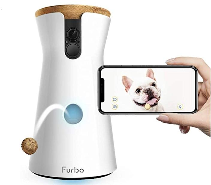 <p>The <span>Furbo Dog Camera</span> ($249) completely changes the experience of being a pet owner away from home.</p>