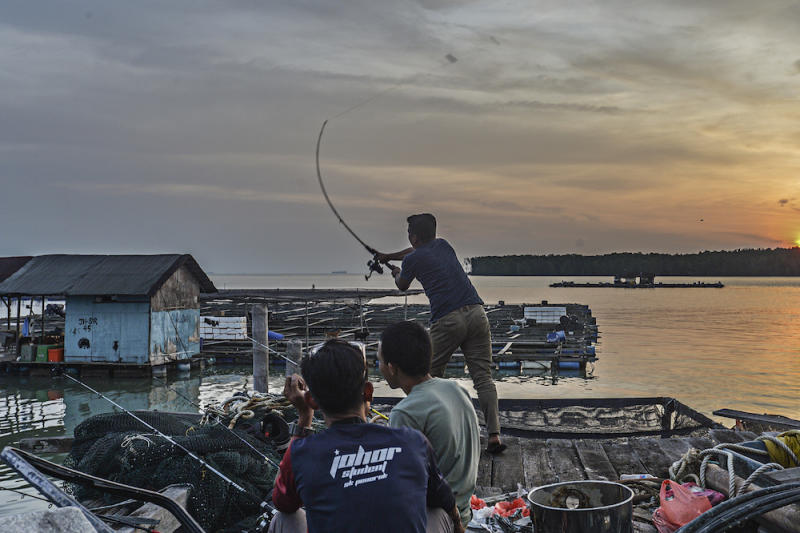 People fish in Kampung Kukup Laut in Kukup, Pontian November 3, 2019. — Picture by Shafwan Zaidon