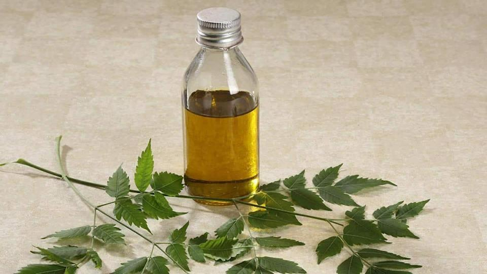 Neem oil for hair: Know how to maximize benefits
