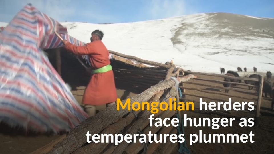 The Red Cross warns that tens of thousands of nomadic herders are facing hunger and loss of livelihood amid extreme weather conditions across Mongolia.