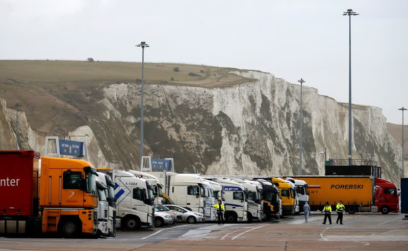 FILE PHOTO: Lorries line up in front of the White Cliffs of Dover, at the Dover ferry terminal in Britain