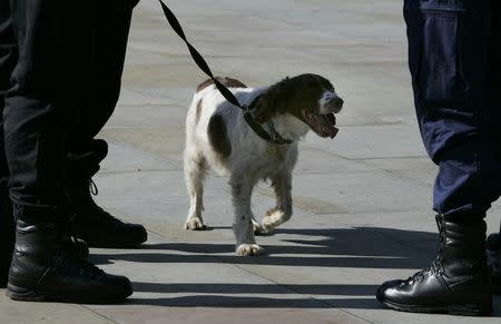 Police dog handler talks with colleague as sniffer dog waits outside GMEX (Greater Manchester Exhibition centre) in Manchester northern Englan