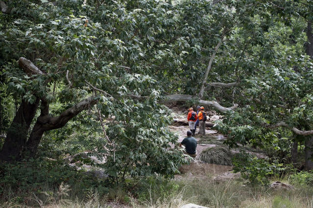 <p>Tonto Search and Rescue volunteers search for missing swimmers near the Water Wheel Campground on Sunday morning, July 16, 2017, in the Tonto National Forest, Ariz., following Saturday's deadly flash-flooding at a normally tranquil swimming area in the national forest. (Alexis Bechman/Payson Roundup via AP) </p>