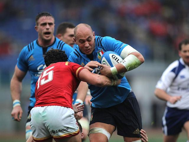 Gloucester are interested in signing Italy captain Parisse (Getty)