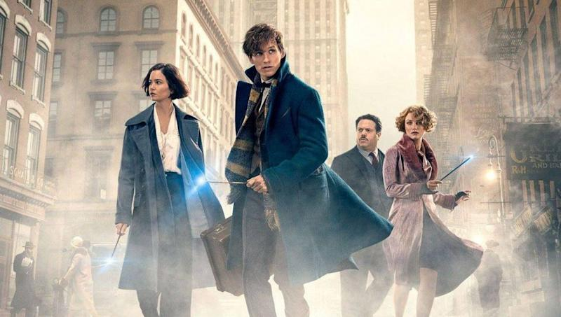 Fantastic Beasts (Credit: Warner Bros)