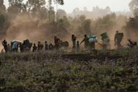 4,600 people flee their homes in DR Congo daily: UN