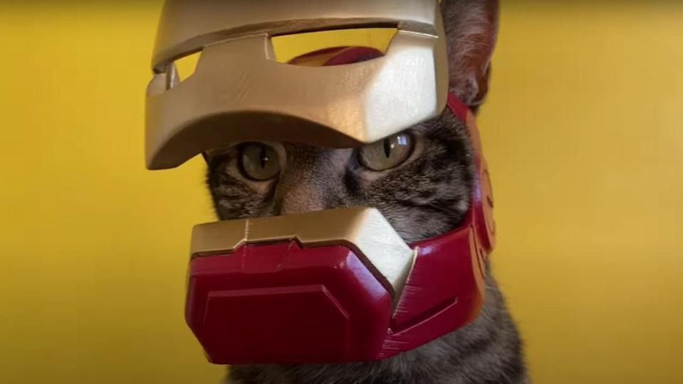 A cat wearing a functional Iron Man helmet, staring into the camera.