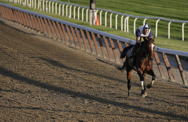 One of the horses killed in the crash was the daughter of Belmont Stakes winner Tonalist. (AP Photo/Julie Jacobson)