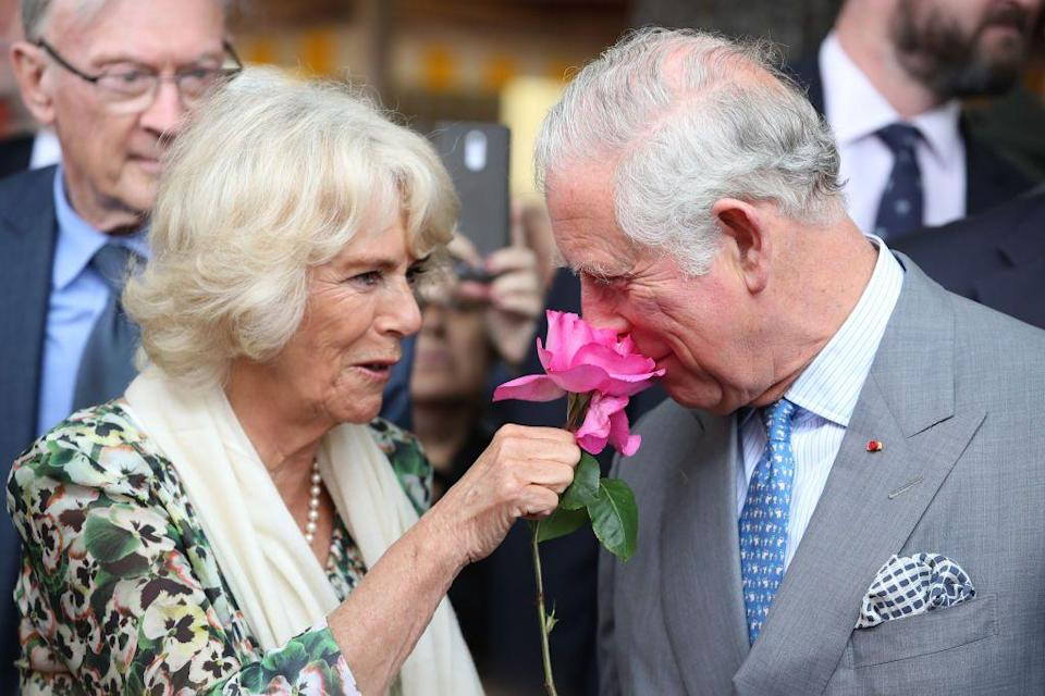 <p>Prince Charles smells a rose offered to him by Camilla in Nice, France.</p>