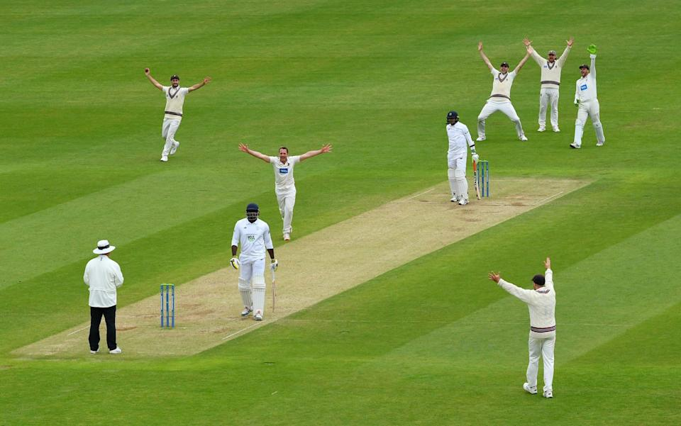 Hampshire dug in but Somerset eventually got over the line - GETTY IMAGES