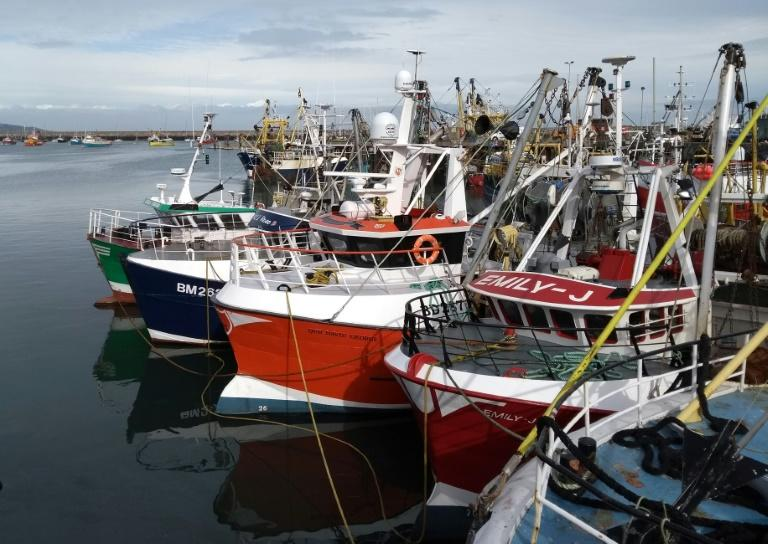 Opinion polls suggest at least 90 percent of British fishermen voted for Britain to leave the EU