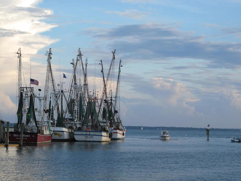 Shrimp boats sit at dock in Mount Pleasant, S.C., in this August 18, 2013, photograph. Lawmakers in both state legislatures and in Washington, D.C., have been considering bills that would help to ensure more accurate labeling of seafood. (AP Photo/Bruce Smith)