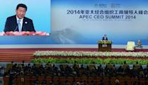 Chinese President Xi Jinping speaks to open the APEC CEO Summit at the China National Convention Centre in Beijing on November 9, 2014 (AFP Photo/Wang Zhao)