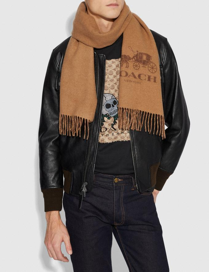 Signature Cashmere Scarf - Coach Outlet