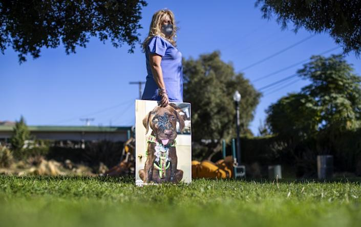 """YUCAIPA, CA - NOVEMBER 16, 2020: Sedna Moseley with large photo of her now deceased dog Riley whom she adopted as a puppy when a woman dropped him off at an animal hospital covered in acid and suffering from a broken jaw and head injuries on November 16, 2020 in Yucaipa, California. Moseley nursed Riley back to health as best she could and was contacted by Marc Ching, founder of Animal Hope and Wellness Foundation in hopes of getting donations for the surgeries Riley needed. But, instead Ching embellished the dog's injuries and keep most of the money for himself, Moseley said. Riley lived to be 3-years-old. But, he began to have seizures because of his head injuries. """"I'll never forget that day on August 8, 2017 when Riley was dropped off. He was 6 weeks old. I didn't know what the journey would entail, but I knew I would be with him until the end. He made me a better person,"""" Moseley said.(Gina Ferazzi / Los Angeles Times)"""
