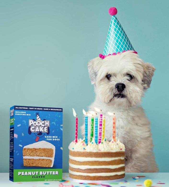 Pooch Cake Wheat-Free Peanut Butter Cake Mix & Frosting Dog Treat (Photo: Chewy)