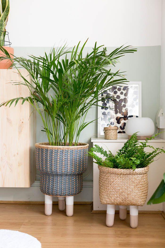 """<p>Francesca of <a href=""""http://fallfordiy.com/about/"""" rel=""""nofollow noopener"""" target=""""_blank"""" data-ylk=""""slk:Fall For DIY"""" class=""""link rapid-noclick-resp"""">Fall For DIY</a> made these baskets her own by simply adding legs to them. Seriously, how amazing are these?</p><p>See more at <a href=""""http://fallfordiy.com/blog/2018/06/12/diy-legged-basket-planter/"""" rel=""""nofollow noopener"""" target=""""_blank"""" data-ylk=""""slk:Fall For DIY"""" class=""""link rapid-noclick-resp"""">Fall For DIY</a>.</p><p><a class=""""link rapid-noclick-resp"""" href=""""https://www.prettypegs.com/us/home/21-svea-.html#/fittings-m8_bolt/size-height_150_mm/colour-white_ash"""" rel=""""nofollow noopener"""" target=""""_blank"""" data-ylk=""""slk:BUY NOW"""">BUY NOW</a> <strong><em>Pretty Peg Legs, prettypegs.com</em></strong></p>"""
