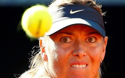 Maria Sharapova keeps her eyes on the ball - Credit: Reuters