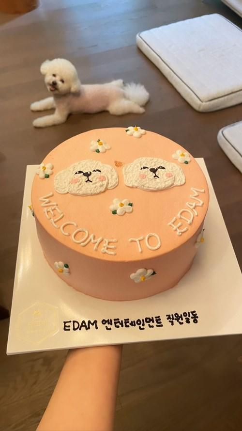 The agency also presented Shin with a cake with pics of her dogs