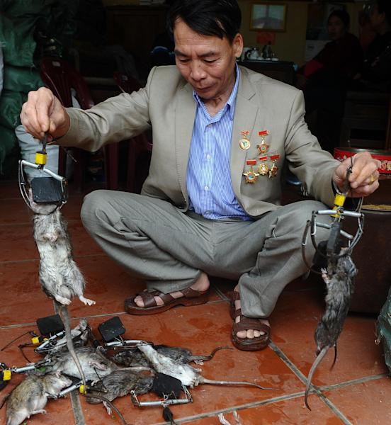 "Tran Quang Thieu, nicknamed ""Rat King"", explains features of a rat trap he has created at his home on the outskirts of Hanoi, on March 3, 2014 (AFP Photo/Hoang Dinh Nam)"