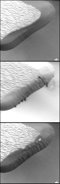 A comparison between a set of avalanches on a Martian dune and avalanches on a sand dune in Namibia. The Mars scale bar is 50 meters, indicating that the avalanches are all about 10 meters across, and the Namibia avalanches are about 30 centime