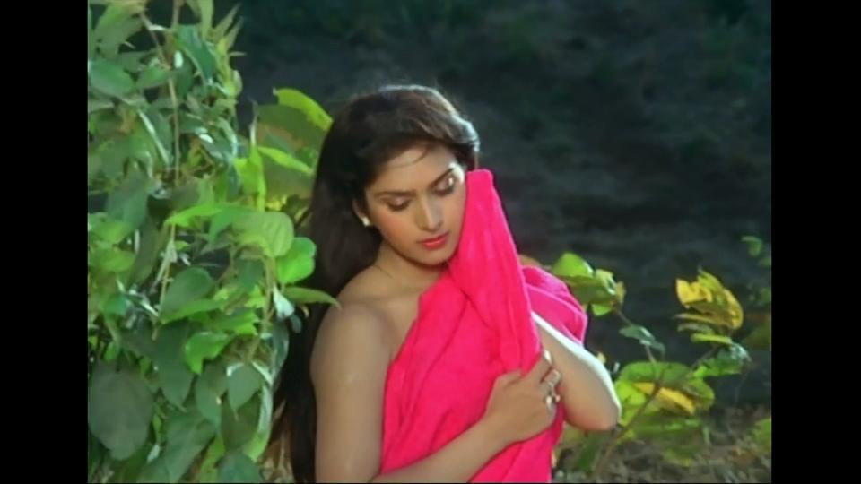 """But <em>Damini</em> was not the only box office success by this talented 80-90s actress. She was one of Subhash Ghai's finds who he had launched with Jackie Shroff in 1983. Their debut, <em>Hero</em>, was an """"All time blockbuster"""" at the box office which turned the debutants into overnight stars and Film-makers queued-up the gates of Meenakshi and Jackie who despite being industry outsiders had proved their mettle."""