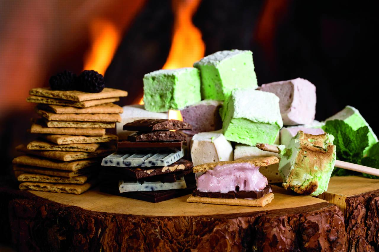 Dream jobs im a smores expert at the ritz carlton video smore making is also becoming a hip hotel amenity publicscrutiny Gallery
