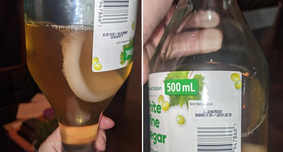 The unusual 'pikelet' found floating in her bottle of white wine vinegar.