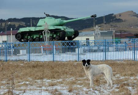 FILE PHOTO: A dog stands in front of a Soviet IS-2 tank, a World War II monument, in the village of Malokurilskoye on the island of Shikotan, Southern Kurils, Russia, December 18, 2016. REUTERS/Yuri Maltsev/File Photo