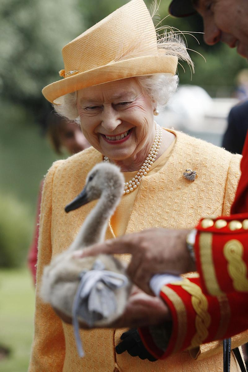 Queen Elizabeth II smiles as she is being shown a orphaned cygnet at Oakley Court on the river bank during the swan upping census (the ancient ritual of her swans being counted) on the River Thames near Windsor. (Photo by Sang Tan/PA Images via Getty Images)