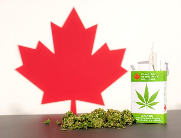 Canadian maple leaf cutout next to marijuana buds and pack of marijuana cigarettes.