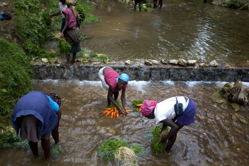 In this picture taken Aug. 16, 2012, vendors wash their vegetables in a river at La Visite National Park, Haiti, preparing them for sale at a street market in Port-au-Prince. A police operation to clear out farmers living for generations in the national park, a rare piece of protected woodland in one of the most deforested countries on earth, is now under investigation after four squatters were shot to death in the attempted eviction. (AP Photo/Dieu Nalio Chery)