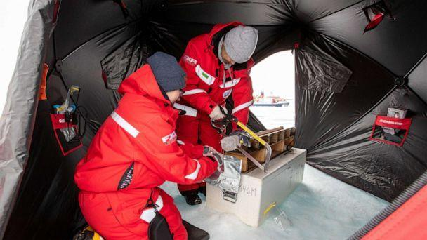 PHOTO: Dr. Allison Fong uses a saw to section off ice core samples in a tent in the Arctic. (Lianna Nixon)
