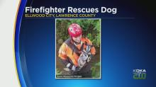 Firefighter Rescues Dog In Lawrence County