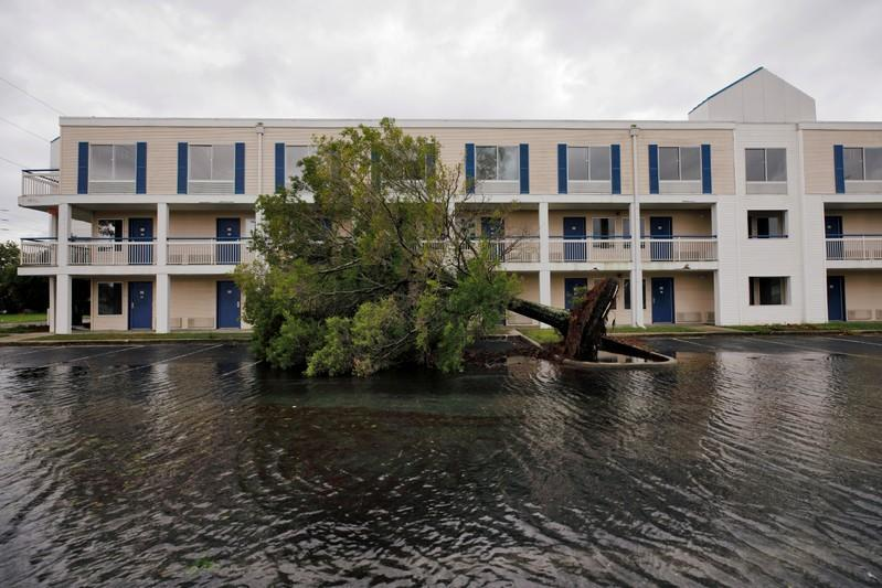 FILE PHOTO: A fallen tree and flood waters sit in a hotel parking lot after Hurricane Dorian swept through, in Wilmington, North Carolina