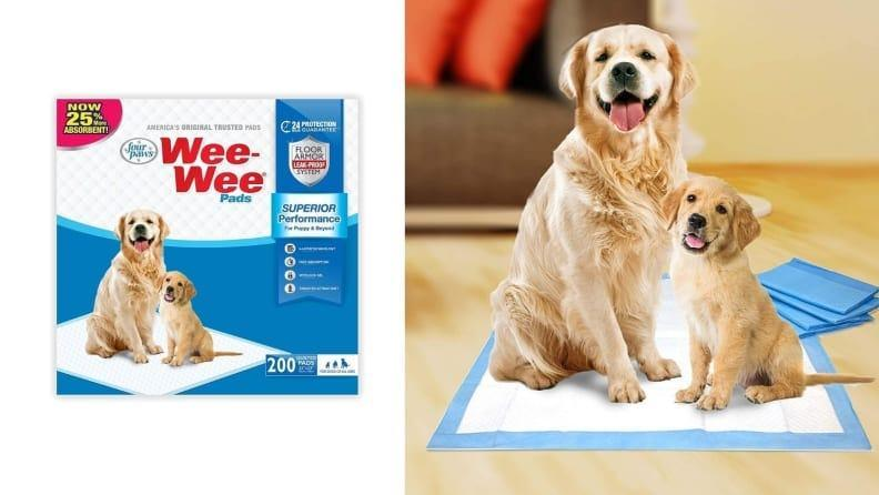 If your pup isn't potty trained, these pads will at least entice them to go on something disposable.